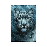 Snow Leopard Mini Poster Print