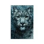 Snow Leopard Rectangle Magnet (10 pack)
