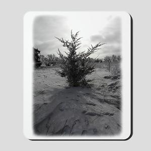 Little Prairie Christmas Tree Mousepad