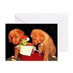 Toller Puppies Christmas Cards (Pk of 10)