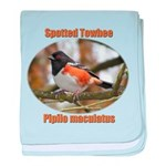 Spotted Towhee baby blanket