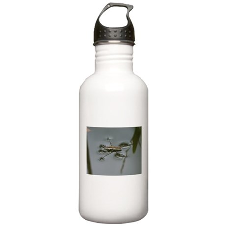 Water Strider Stainless Water Bottle 1.0L
