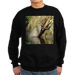 Pond Turtle Basking Sweatshirt (dark)