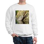 Pond Turtle Basking Sweatshirt