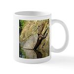 Pond Turtle Basking Mug
