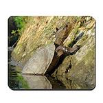 Pond Turtle Basking Mousepad