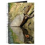 Pond Turtle Basking Journal