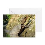 Pond Turtle Basking Greeting Card