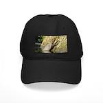 Pond Turtle Basking Black Cap