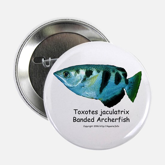 Banded Archerfish Button