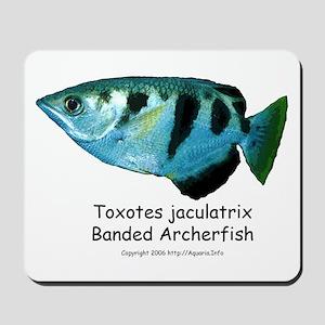 Banded Archerfish Mousepad