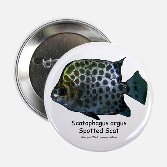 Scatophagus argus Button