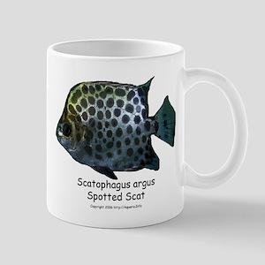 Scatophagus argus Mug