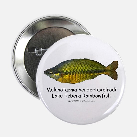Lake Tebera Rainbowfish Button