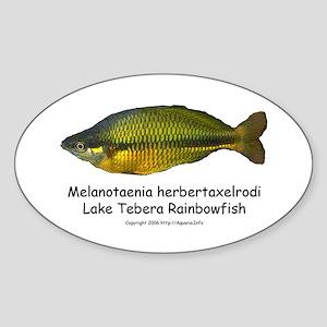 Lake Tebera Rainbowfish Oval Sticker