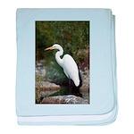 Great Egret baby blanket
