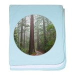 Redwood Forest baby blanket