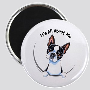 Boston Terrier IAAM Magnet