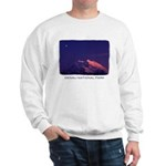 Denali National Park Sweatshirt