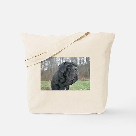 Cool Intimidating Tote Bag