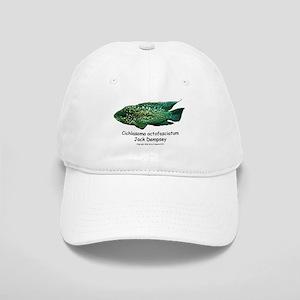 Cichlasoma octofasciatum Cap