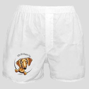 Red Dachshund IAAM Boxer Shorts