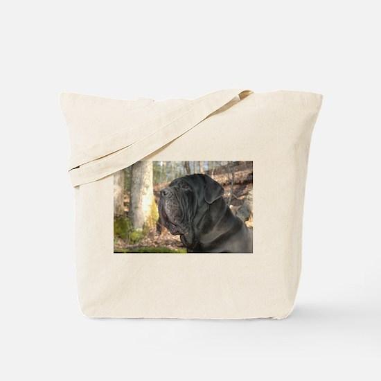 Cute Intimidating Tote Bag