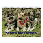 Kindred Spirit Wall Calendar :2011