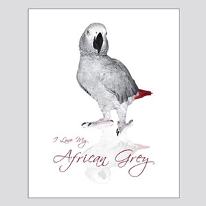 i love my african grey Small Poster