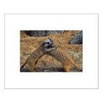 Meerkat Small Poster
