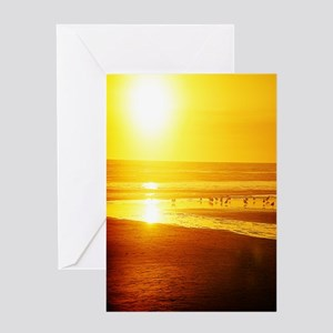 Sunset N Seabirds Greeting Card