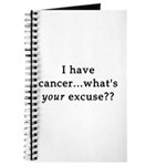 What's YOUR excuse? Journal