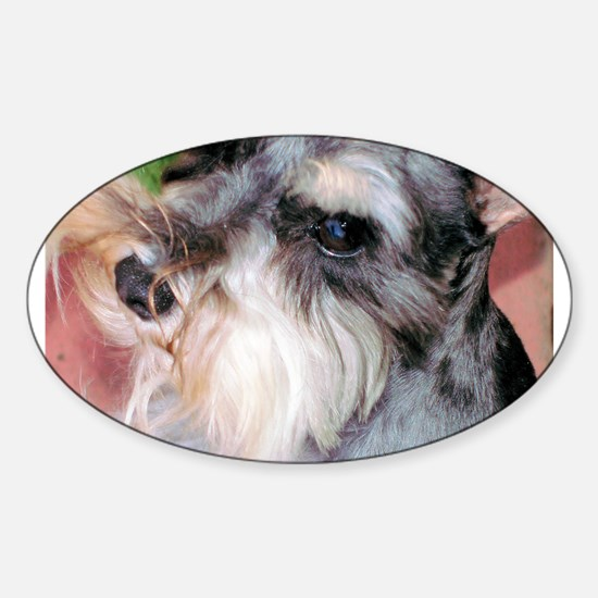 Schnauzer Deep in Thought Oval Decal
