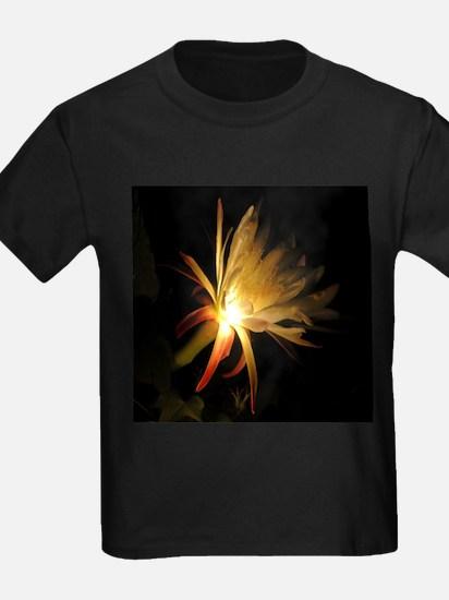 Cereus Cactus Blossom T