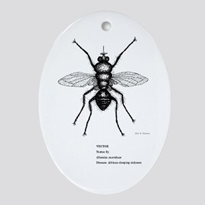 Insect Ornament (Oval)