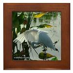 Wing-Lit Egret - Framed Tile