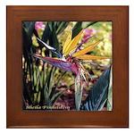 Bird of Paradise #3 - Framed Tile