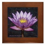 Tropical Water Lily - Framed Tile