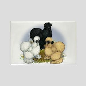 Silkie Chicken Trio Rectangle Magnet