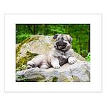2020 Shiloh Puppy Small Poster