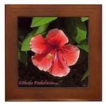 Red Orange Hibiscus - Framed Tile