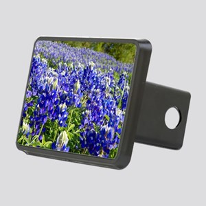 Fields of Bluebonnets Hitch Cover