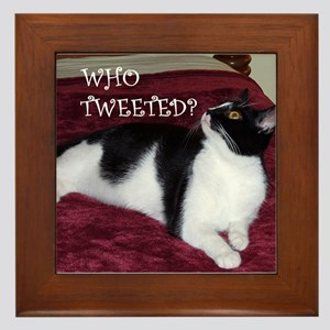 Kitty Who Tweeted Framed Tile