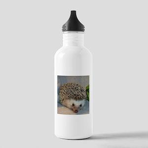 Dammler Stainless Water Bottle 1.0L