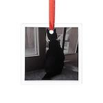 Black Cat at Screen Door Square Glass Ornament