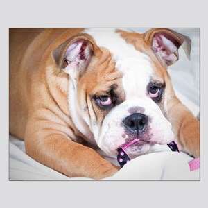 English Bulldog Puppy Small Poster