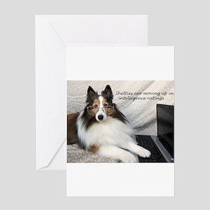Sheltie Intelligence Greeting Card