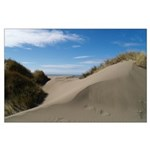 Pacific Dune Scene Large Poster