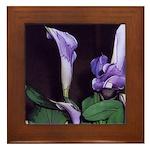 Purple Calla Lily Framed Tile