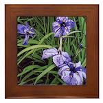 Irises #1 Framed Tile
